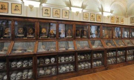 Il Comitato No Lombroso: «150 città contro il Museo di Antropologia criminale»